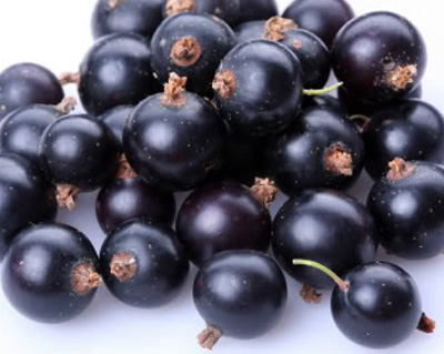 Is the Acai Berry really a superfood?